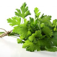 Parsley and recipes with it from potionsquirrel.ru