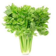 Celery and recipes with it from potionsquirrel.ru