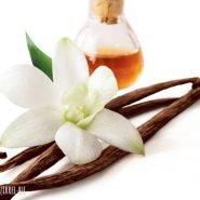 Vanilla extract and recipes with it from potionsquirrel.ru