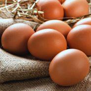 Яйца и рецепты с ними от potionsquirrel.ru