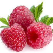 Raspberry and recipes with it from potionsquirrel.ru