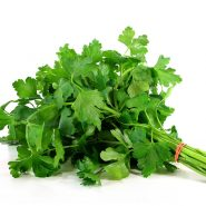 Cilantro and recipes with it from potionsquirrel.ru