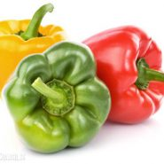 Bulgarian pepper and recipes with it from potionsquirrel.ru
