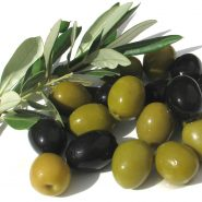 Olives and recipes with them from potionsquirrel.ru