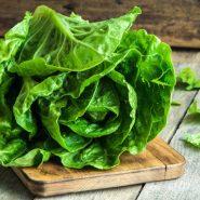 Листовой салат и рецепты с ним от potionsquirrel.ru