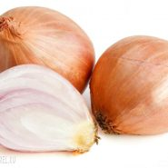 Onions and recipes with him from potionsquirrel.ru