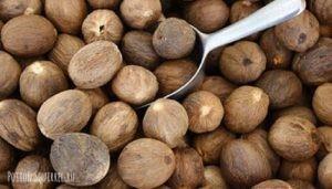 Состав мускатного ореха