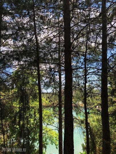 Мимо озера Зарос, через сосновый бор тропа выходит к калитке