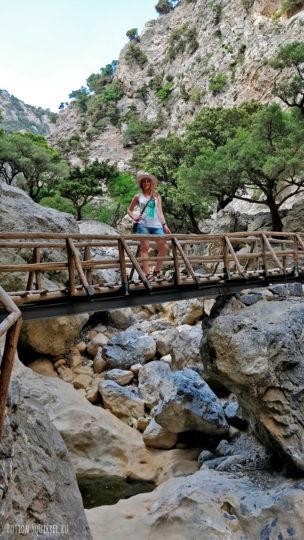 Лесные службы позаботились о мостиках и лесенках