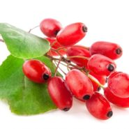 Ingredients: Barberry and dishes with him